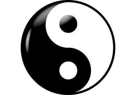 yin-yang-vector